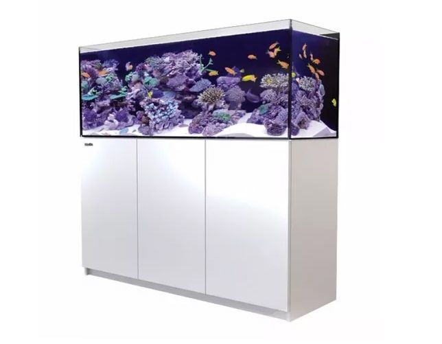 AQUARIO RED SEA REEF SYSTEM C/ MOVEL - REEFER XL 525  WHITE